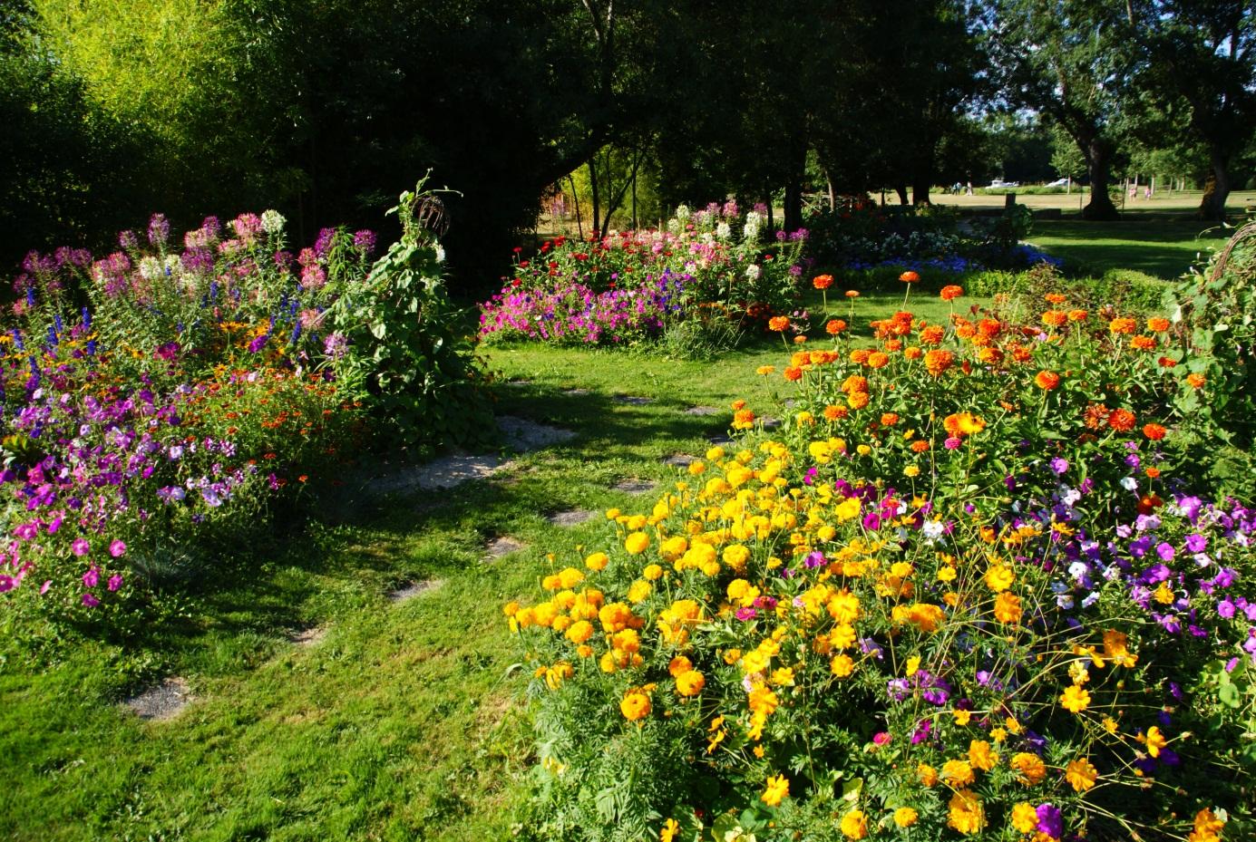 Ecobati fait un geste pour l 39 cologie en cr ant un pr fleuri for Jardin fleuri lyon 9