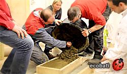 découverte du béton d'argile en formation