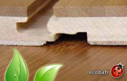 bambou eco