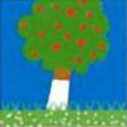 chaux hydratée pour le traitement des pelouses et des arbres