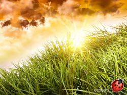ecobati soleil
